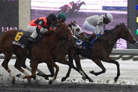 Paladin Bay ridden by jockey Gerry Olquin capture the Ontario Lassie Stakes at Woodbine Racetrack in Toronto, Ontario.