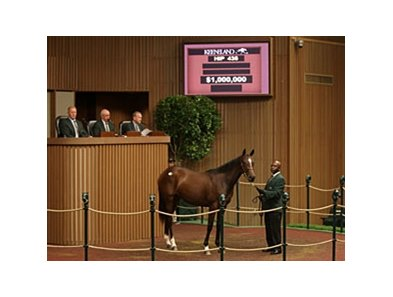 Hip 438, a Malibu Moon filly, brought $1 million.