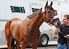 American Pharoah arrives at Churchill Downs April 13.
