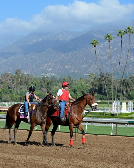 Caption:  Flying Tipat with Tammy Fox for Romans