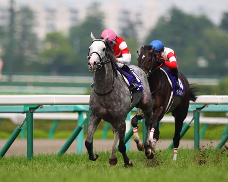 Dual Japanese classic winner Gold Ship earned a Breeders' Cup Turf (gr. IT) berth when shaking off Gentildonna and charging past leader Danon Ballade for a clear win in the Takarazuka Kinen (Jpn-I) June 23, 2013 at Hanshin Racecourse. Gentildonna finishes 3rd in the race.