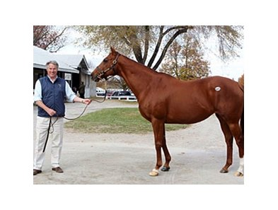 Michael Hernon with Rhumb Line, dam of Zazu.