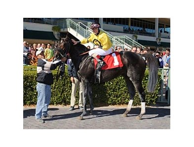 Abigail Fuller after winning race 2 at Gulfstream Park.