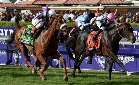 Main Sequence (#12) and jockey John Velazquez win the Breeders' Cup Turf (gr. I).