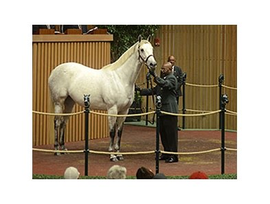 Awesome Maria brought $4 million at the Keeneland November breeding stock sale's opening session.