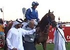 Dubai World Cup 2015: Godolphin Mile