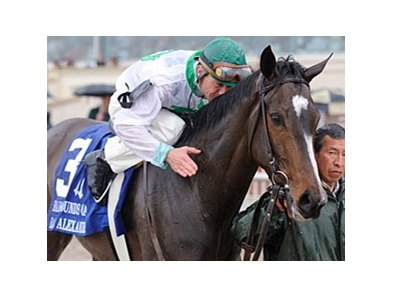 "All eyes will be on Rachel Alexandra in the Fantasy.<br><a target=""blank"" href=""http://www.bloodhorse.com/horse-racing/photo-store?ref=http%3A%2F%2Fpictopia.com%2Fperl%2Fgal%3Fprovider_id%3D368%26ptp_photo_id%3D7976425%26ref%3Dstory"">Order This Photo</a>"