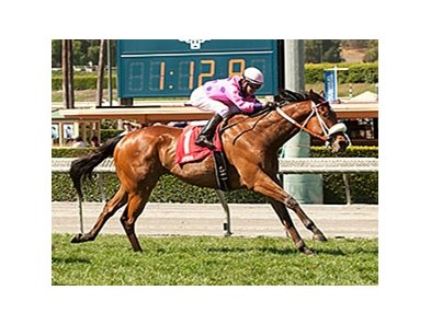 Get Happy Mister wins the San Simeon Stakes.