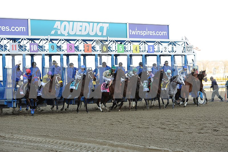 Start of the Grade I Wood Memorial at Aqueduct Racetrack in New York.