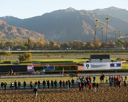Caption:  turf workers including The Fugue