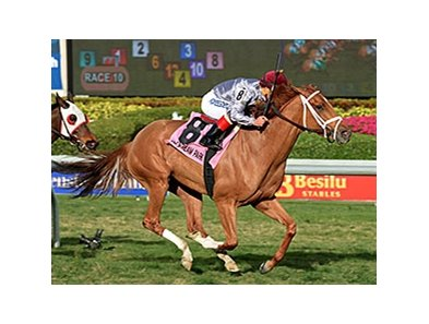 "Sandiva flies home to win the Suwannee River Stakes.<br><a target=""blank"" href=""http://photos.bloodhorse.com/AtTheRaces-1/At-the-Races-2015/i-CWrLg4m"">Order This Photo</a>"