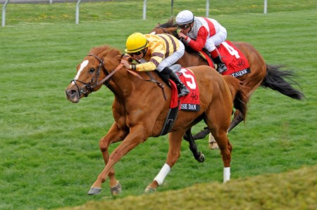 Wise Dan wins the 2013 Maker's 46 Mile Stakes at Keeneland.