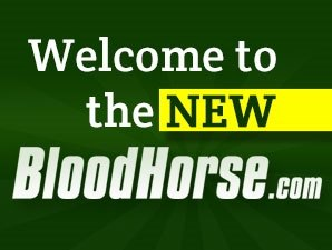 BloodHorse.com Has a New Look