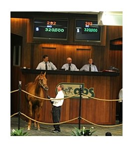 A filly by Limehouse, Hip No. 292, brought $320,000 from Alex and JoAnn Lieblong to top the opening session.