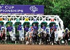 "The start of the 2014 Breeders' Cup Classic <br><a target=""blank"" href=""http://photos.bloodhorse.com/BreedersCup/2014-Breeders-Cup/Classic/i-NdzQQXX"">Order This Photo</a>"