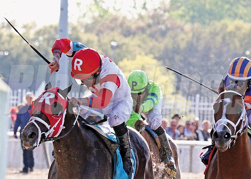 Ken and Sarah Ramsey's International Star capped a trio of 3-year-old prep wins at Fair Grounds Race Course with a game victory over pacesetter Stanford in the Grade II $750,000 Louisiana Derby.