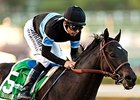 Shared Belief Still Healing in Northwest