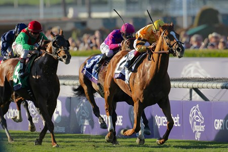 Wise Dan with jockey John Velazquez runs away from the field to win the Breeders' Cup Mile (gr IT) in a course record time at Santa Anita Park in Arcadia, California November 3, 2012.