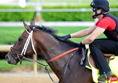 Caption: Commanding Curve gets a reassuring pat.