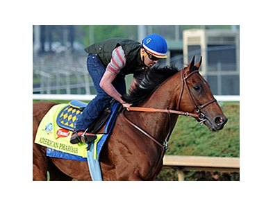 "American Pharoah<br><a target=""blank"" href=""http://photos.bloodhorse.com/TripleCrown/2015-Triple-Crown/Kentucky-Derby-Workouts/i-LP9jXnS"">Order This Photo</a>"