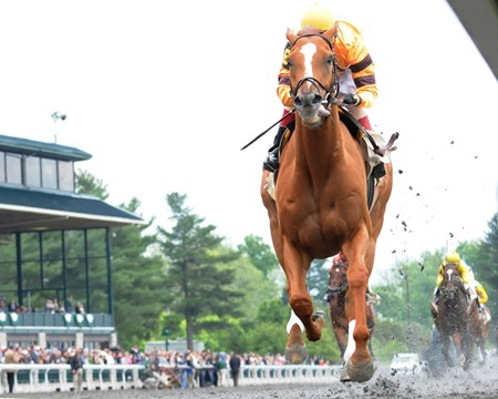 Keeneland Race Course; Lexington; KY 4/21/12 photo by Mathea Kelley; Wise Dan, John Velazquez up, wins the Ben Ali Stakes.