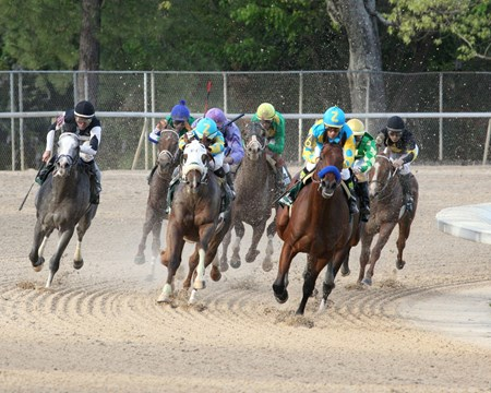 Zayat Stables' homebred American Pharoah continued his tour-de-force of Oaklawn Park 3-year-old prep series, blowing away seven rivals in the Grade I $1 million Arkansas Derby with an impressive eight-length score.