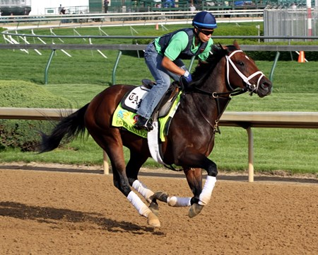 Overanalyze on the track at Churchill Downs on May 2, 2013.