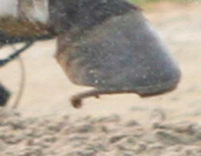 A close-up showing the loose shoe.