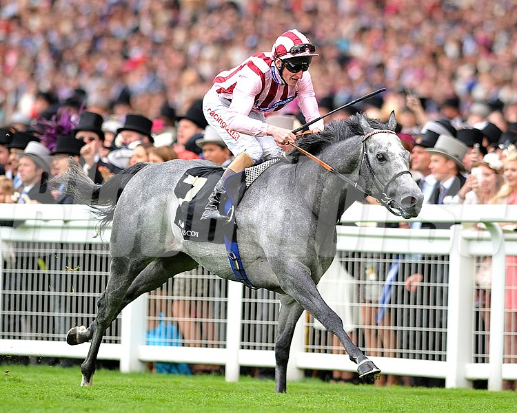 Lethal Force, Adam Kirby up, wins the Diamond Jubilee Stakes June 22, 2013.