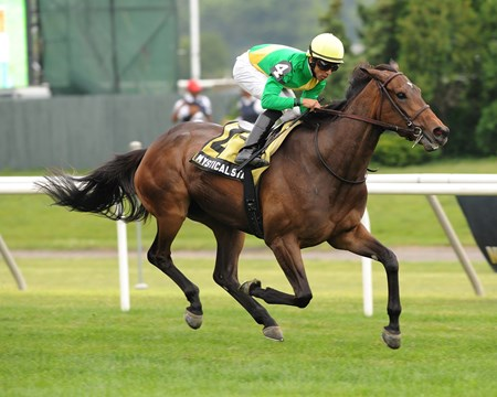 Mystical Star shines in the 2012 New York Stakes at Belmont Park.