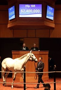 Discreet Marq, hip 185, sold for $2.4 million.