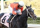 Sarah Sis won the Honeybee Stakes at Oaklawn Park March 7.