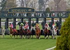 Two Time Horse of the Year  Wise Dan breaks from gate #3 in the Maker's 46 Mile at Keeneland in Kentucky.