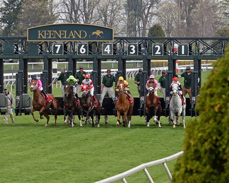 Two Time Horse of the Year 