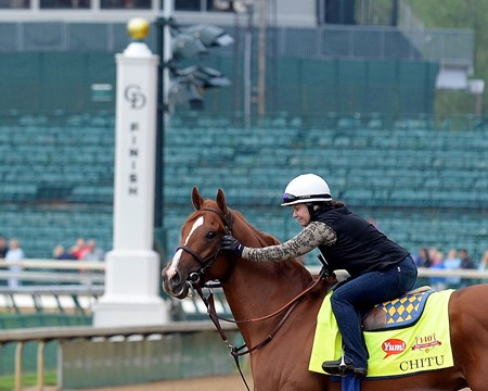 Caption: Exercise rider Dana Barnes reassures Chitu on track in front of finish line post