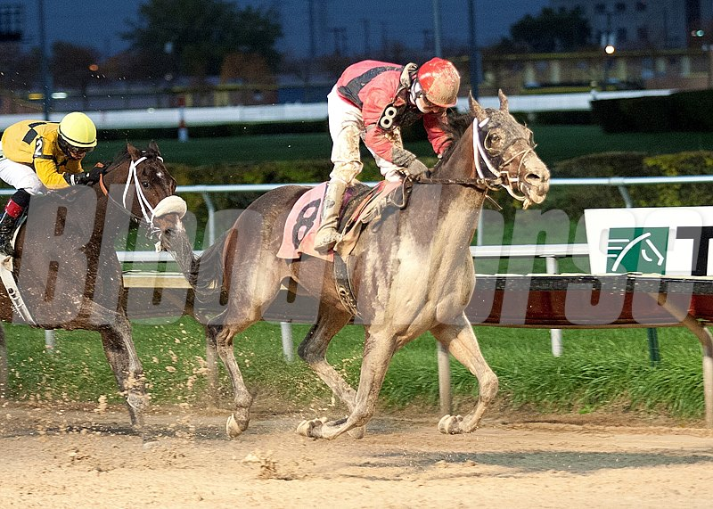Mavericking captures The Buck's Boy Handicap at Hawthorne Racecourse in Illinois.