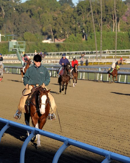 Caption:  D. Wayne Lukas