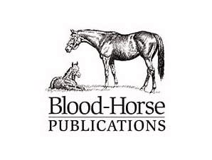 Blood-Horse Wins 14 American Horse Honors