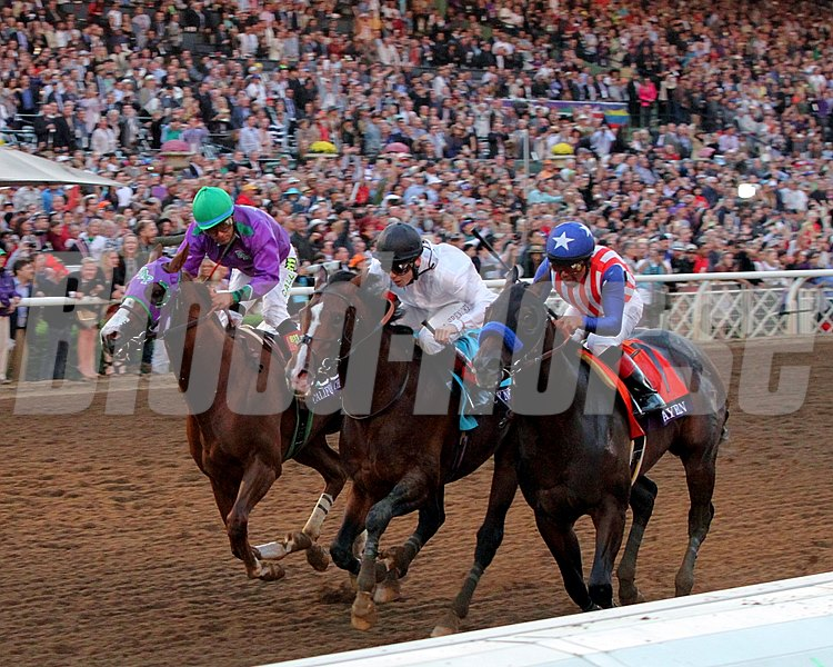 California Chrome (left) with Victor Espinoza, Toast of New York (center) with Jamie Spencer, and Bayern (right) with Martin Garcia battle to the finish of the Breeders' Cup Classic.