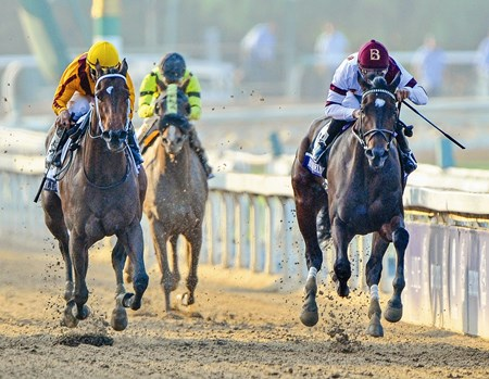 Royal Delta wins the Breeders' Cup Distaff (gr. I), with jockey Mike Smith.