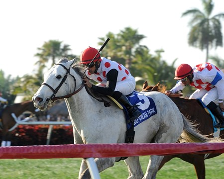 Za Approval and jockey Jose Lezcano take the 2013 Grade III Skip Away Stakes at Gulfstream Park.