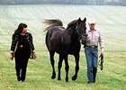 Karen and Mickey Taylor with Seattle Slew