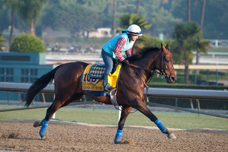 Caption:  Game on Dude with Dana Barnes
