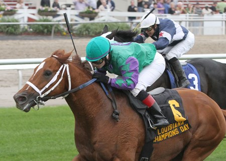 Hud's Rebellion, trained by Andy Leggio Jr. and ridden by Rosie Napravnik, outfought Sadie's Soldier in the final sixteenth of a mile to win by 1 1/2 lengths in the $100,000 Louisiana Champions Day Turf over a Stall-Wilson turf course rated good at Fair Grounds Race Course & Slots.