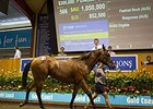 A filly by champion sire Fastnet Rock sold for Aus$1.05 million ($850,846 in U.S. funds) in the Magic Millions Gold Coast Yearling Sale on Jan. 9.
