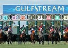 Gulfstream Park starting gate