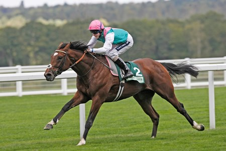 Frankel was trained by Sir Henry Cecil.
