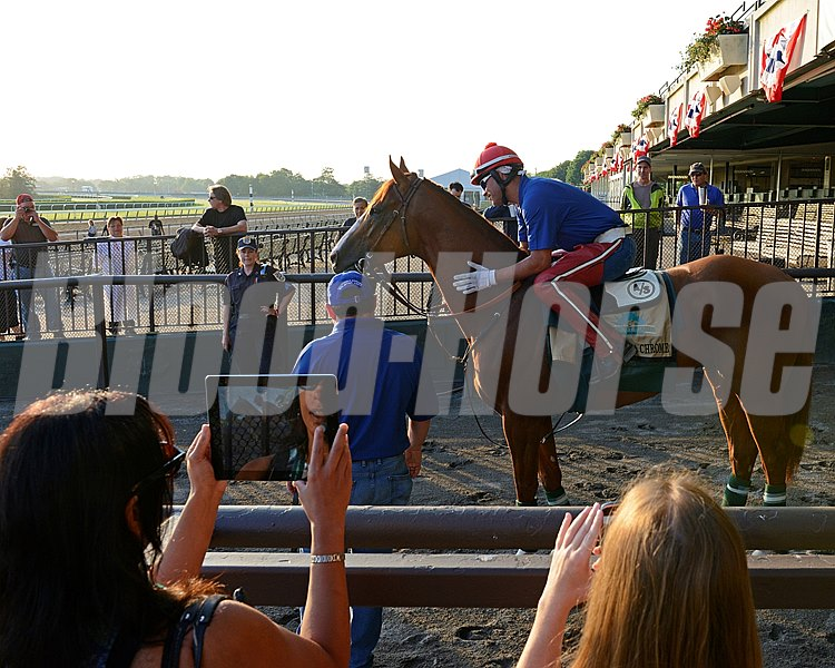 Caption: Media members doing social media of California Chrome on ipad and on  mobile phone