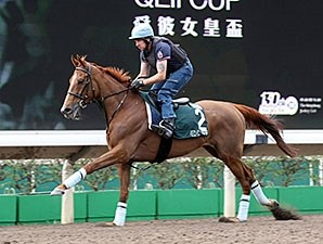Red Cadeaux preps April 23 for the QEII Cup.