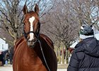 Keeneland January Sale Begins Monday